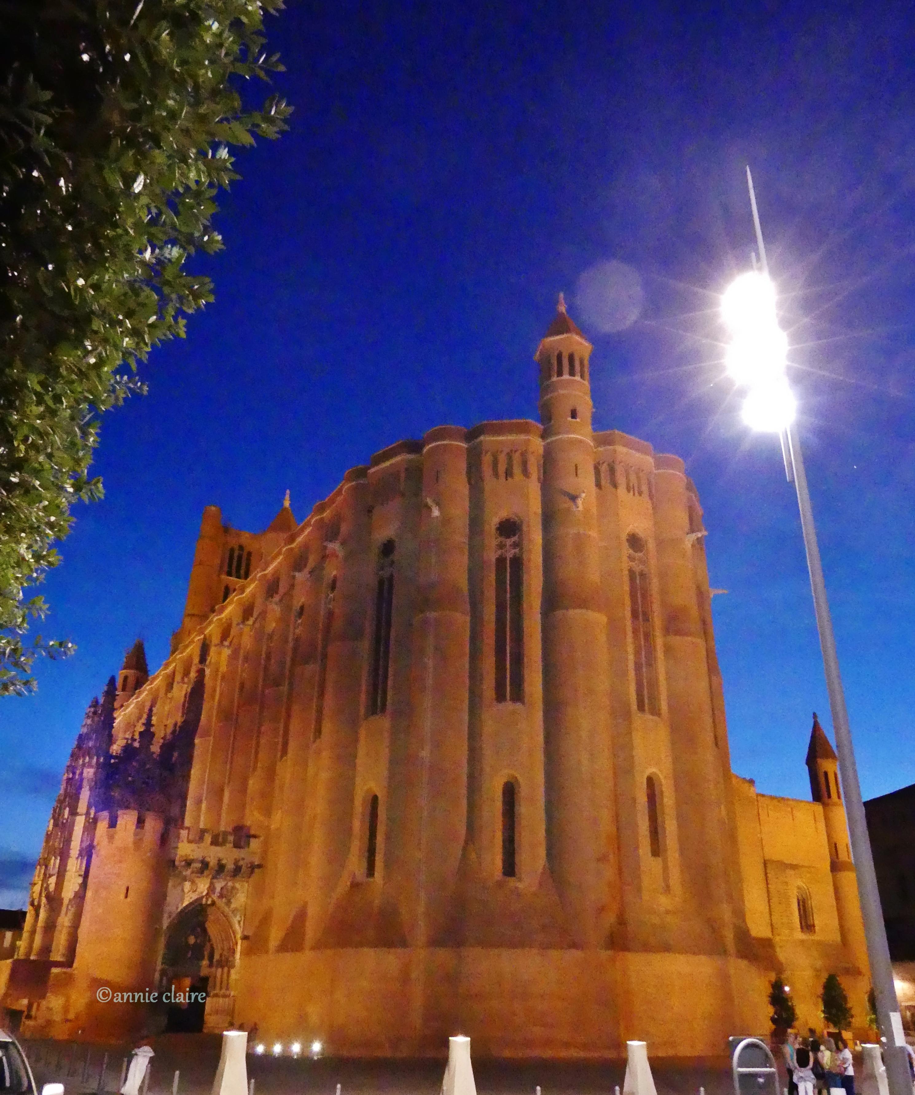 Cathédrale Sainte Cécile ©annie claire